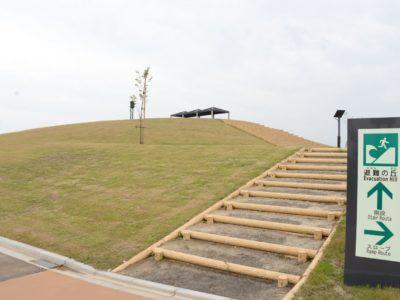 仙台、海岸防災林・避難の丘が完成!
